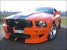 Mustang Ghost Rider von Adi Hess